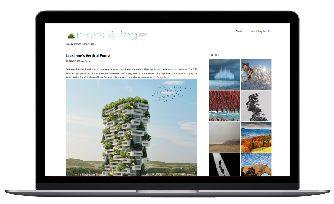 MossandFog.com has a vast curated library of topics ranging from fine art, to technology, to nature-related posts.